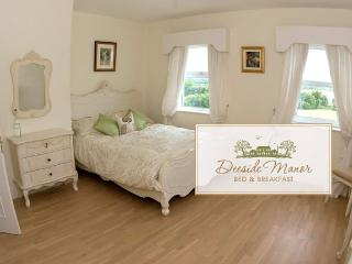 Luxurious B&B manor, Dundalk