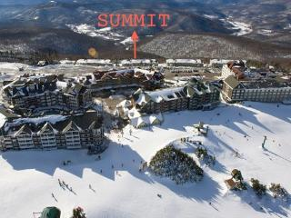 Summit is just a short walking distance to the slopes not need to use the shuttle