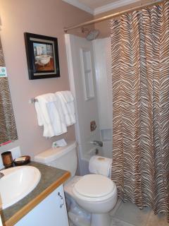 #255 ML main Bathroom