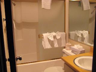 Living Room Bathroom
