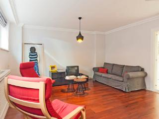 Fancy 2 bdrm apt in the heart of the city, Istambul