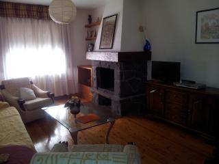 sala de estar con chimenea y TV, libros, juegos.