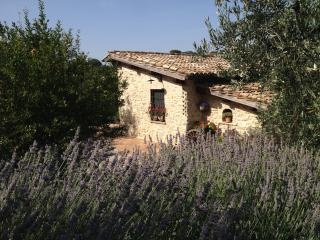 CASALETTO COUNTRY HOUSE, Poggio Mirteto