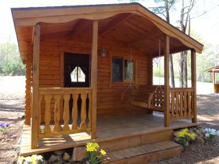 1 room Cedar Log Cabin #1 near Birmingham Alabama, Vandiver