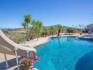 NEW! Amazing Wine Country Estate - VINEYARD VIEWS, Temecula