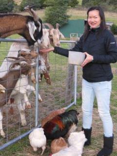 daily animal feeding sessions a great experience for young and old