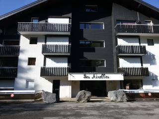 apartment in the Portes du Soleil/ terrace/navette