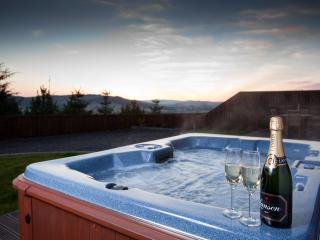 Beautiful lodges with hot tubs - Tree Lodges, Cupar
