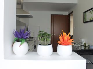 Garden Apartment in Ponta Delgada city