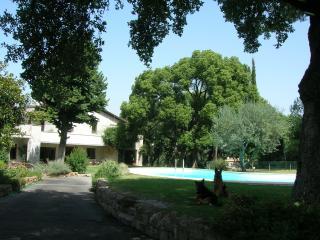 Guest House La Canfora Verde