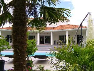 Magnifique villa avec piscine idéale pour, Lapeyrouse