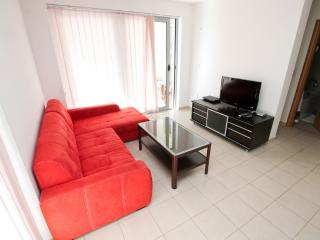 Modern 2 bedroom apartment in Petrovac with pool