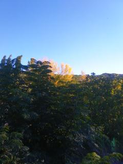 Vista otoñal desde la casa y la terraza