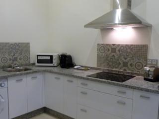 Zona de cocina. Hornilla electrónica, microondas.