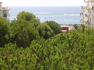 Beachfront  Penthouse, sea & mountain views, Puerto Jose Banus