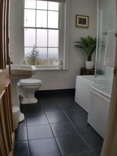 Bathroom with Stunning Views and Spacious Bath with Shower Over
