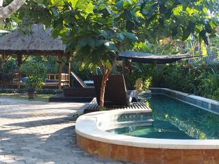 Mango Tree Villa, Nusa Lembongan