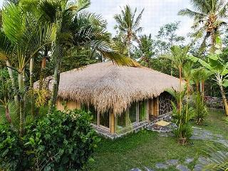 Wonderful Bamboo House