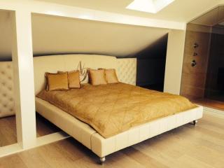 Luxury 3 bedrooms apartment in center of Riga
