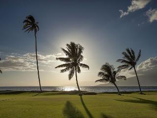 Maui Sunset #A509  Oceanfront Panoramic Ocean Views 1 Bd 2 Bath Great Rates!, Kihei