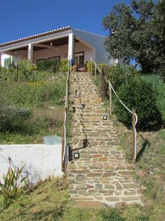 Stairway from garden/pool to house.