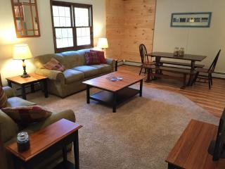 Quick Walk to Ski Lodge at Okemo -  Townhome A, Ludlow
