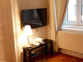 Vienna apartment in city centre