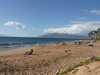 Updated 1st Floor Maui condo (sleeps 4) in Kihei