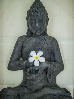 Dharmachakra Buddha Statue signifying wisdom, knowledge and the fulfilling of destiny