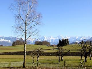 Panorama, Hofen bei Thun
