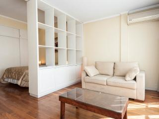 NICE AND BRIGHT STUDIO IN RECOLETA