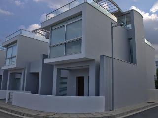 Luxury beachfront villa with private pool, Larnaka City