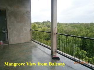 Mangrove Lagoon View, Negombo
