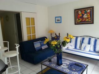 nice apartment in Collioure, Toulouse