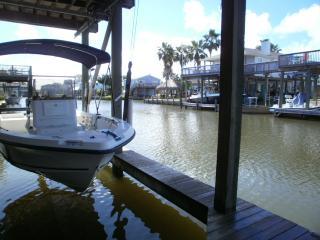 Starfish, Galveston