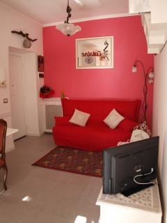 Living room's details
