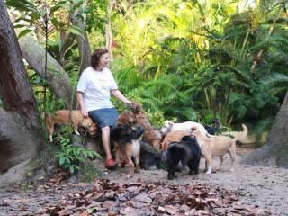Natural retreat with friendly dogs - Earth Lodge 2, Arembepe