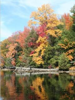 Fall  on the Muskoka River