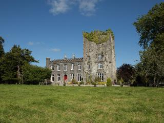 Killaghy Castle: Stay in one of the oldest inhabited castles in Ireland