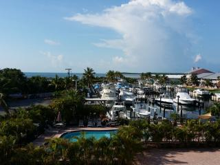 KAWAMA TOWER- Updated Oceanview Unit, Key Largo