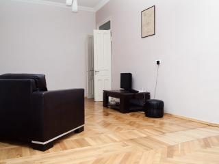 Bright, big, central Flat - two bedrooms - wifi, Tiflis