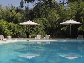 GÎTE dans superbe Mas Provençal - 12pers, Entraigues-sur-la-Sorgue