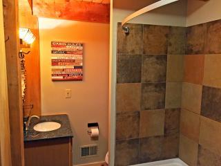 Newly renovated lower bathroom