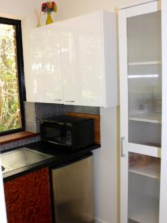 Kitchenette with bar fridge, microwave and two burner electric cook top