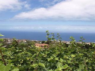 Finca Weinberg, Santa Cruz de Tenerife