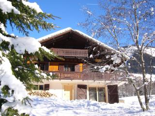Self catered chalet in Chatel, sleeps 12/13