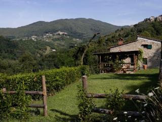 Casa Conti, Pescia