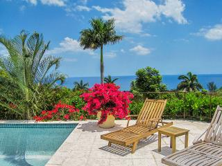 Sugar Hill at Tryall Club, Sleeps 12, Montego Bay