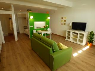 Lovely apartment 4you with parking in Donostia, San Sebastian - Donostia