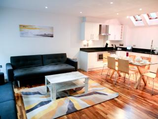 Beautiful Luxury 2 Bed in Camden Town free WIFI